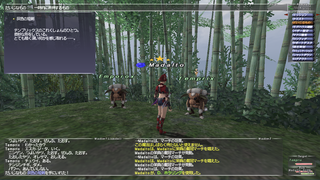ff11_20200111_aeneas01.png
