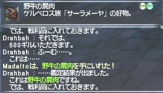 ff11_20200211_shiniku01.png