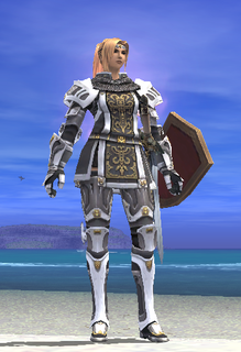 ff11_20200816_pld02.png