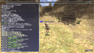 ff11_20201121_trove03.png